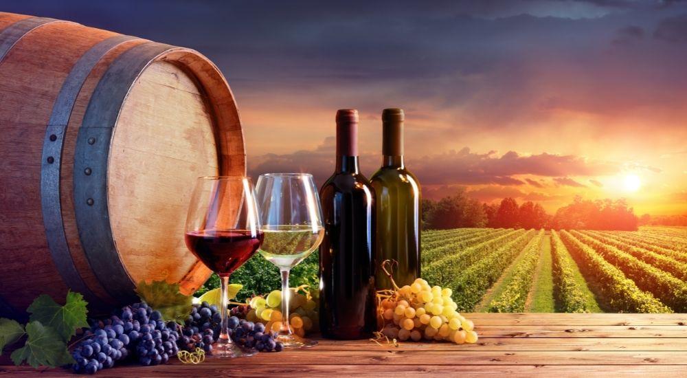 https://www.imprenditoridisuccesso.it/wp-content/uploads/2021/09/migliori-strategie-di-marketing-per-promuovere-il-vino.jpg